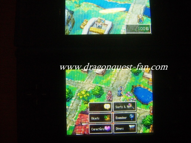 http://www.dragonquest-fan.com//imgs/dragonquestds/fr271107/4.jpg