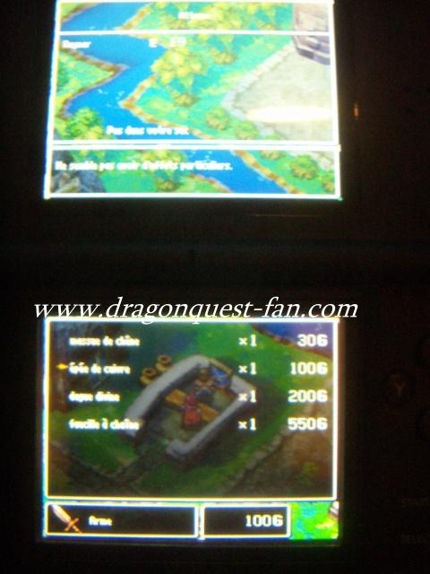 http://www.dragonquest-fan.com//imgs/dragonquestds/fr271107/6.jpg