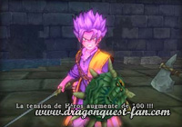 Dragon Quest Tension Héros